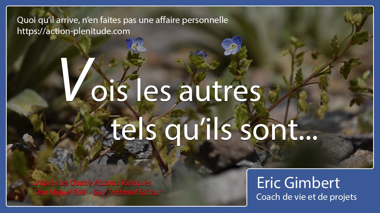 Proverbes Et Citations